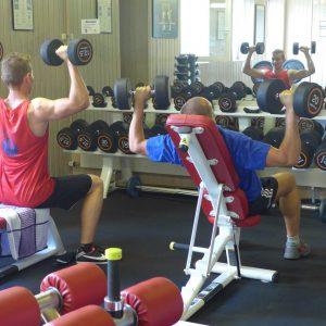 Muskeln und Kraft