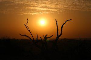 Über Wüsten berichtet