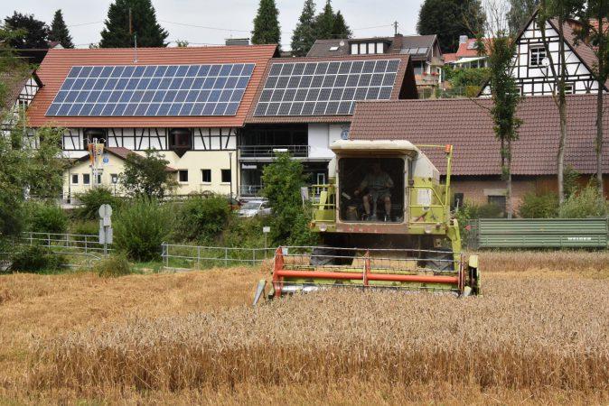 Getreidefelder direkt neben der Brennerei im Mettertal