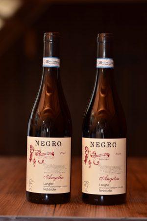 Nebbiolo von Negro aus Canale