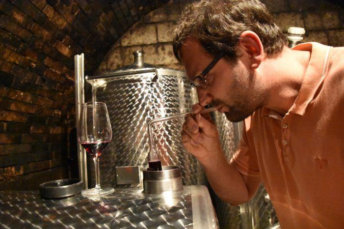 Michael Sailer Weinviertel
