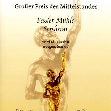 Von der Oskar-Patzelt-Stiftung als Finalist ausgezeichnet